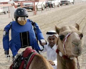 Robot jockey racing in Quatar